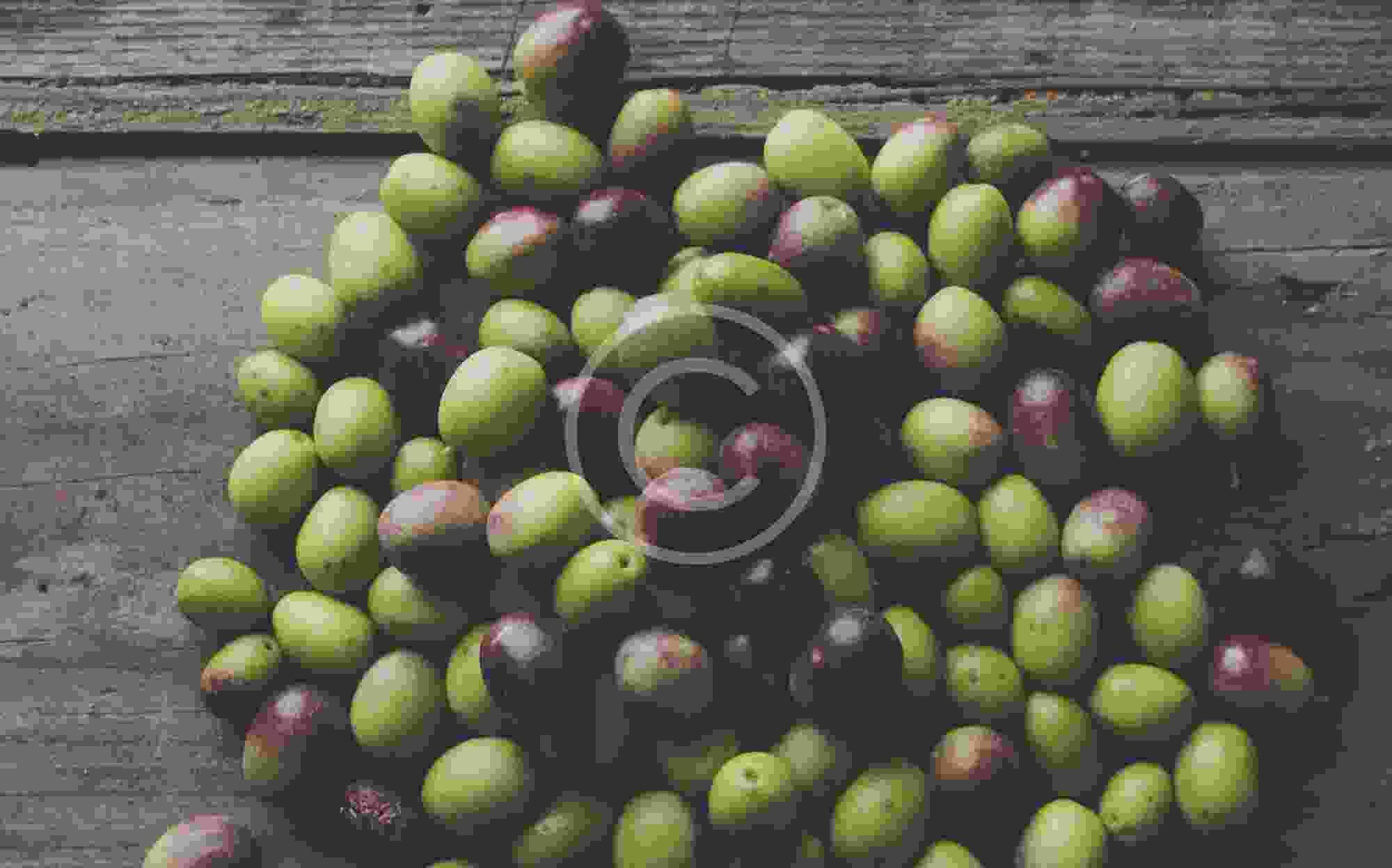 10 Secrets of Olive Oil